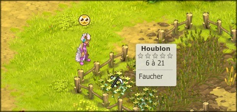 Houblon Normal