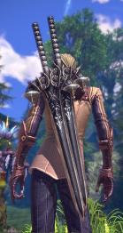 apparence d'une paire d'épée pour guerrier 04