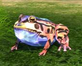 Le roi des grenouilles, l'un des familiers de TERA