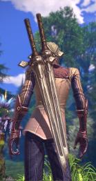 apparence d'une paire d'épée pour guerrier 01