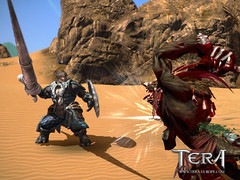 Le gameplay du lancier de Tera