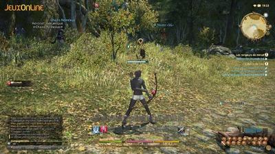 L'exhibitionnisme sur Final Fantasy XIV